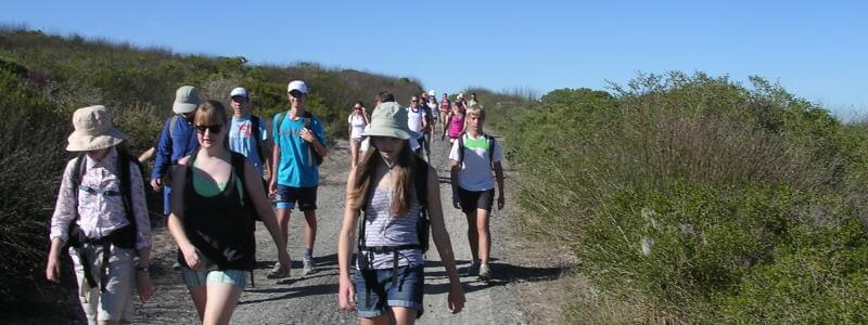 Adventure Hiking & Walking Tour near Cape Town